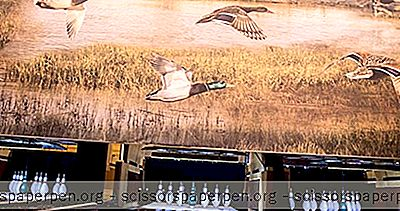 被绘的鸭子 -  Duckpin保龄球和更多在亚特兰大