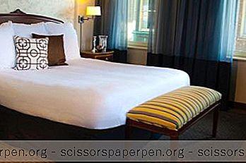 छुट्टियां - पा गेटएवेज: पुनर्जागरण पिट्सबर्ग होटल