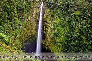 25 Най-Добрите Неща За Вършене В Хило, Хавай