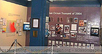 Hilo, Hai Yang Harus Dilakukan: Museum Tsunami Pasifik