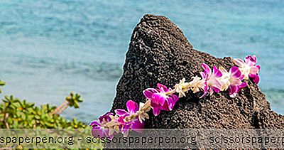 Meleana Lei Workshops Maken In Honolulu