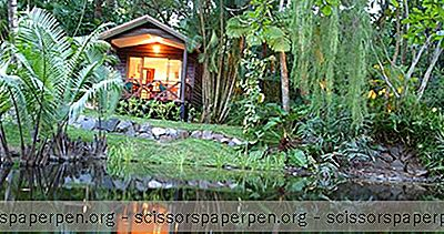 Kewarra Beach Resort Near Cairns: Stijlvolle Bungalows & Arrangementen