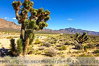 15 Những Điều Tốt Nhất Để Làm Ở Smilelin, Nevada