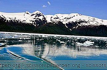15 Beste Ting Å Gjøre I Seward, Alaska