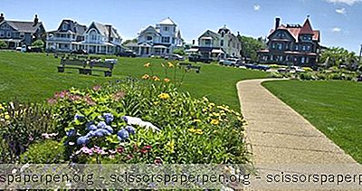 Idei - Excursie De O Zi La Martha'S Vineyard Din Boston