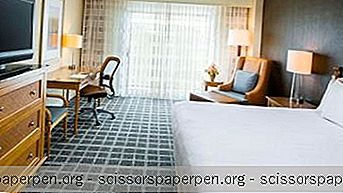 Hyatt Regency Chesapeake Bay Golf Resort, Spa En Marina