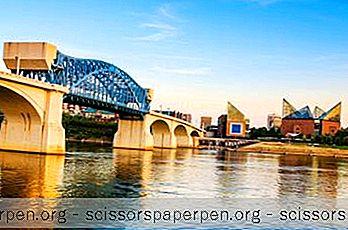 Những Điều Cần Làm Trong Chattanooga: Thủy Cung Tennessee