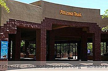 Неща За Правене Във Финикс, Аризона: Зоологическа Градина В Феникс