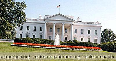 Ideas - Cosas Que Hacer En Washington, DC: La Casa Blanca