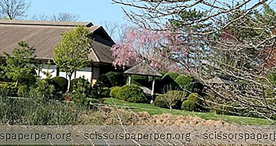 Champaign, Il Choses À Faire: Japan House