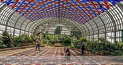 Dinge, Die Man In Chicago Unternehmen Kann: Garfield Park Conservatory