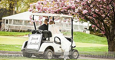 Indianapolis Bryllupssteder: Maple Creek Golf And Country Club