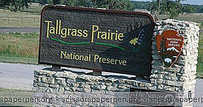 Tekemistä Kansasissa: Tallgrass Prairie National Preserve