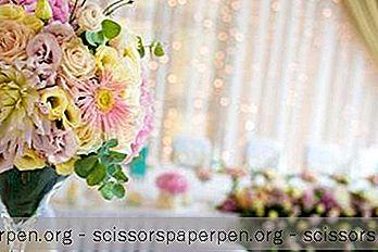 25 Nejlepší Svatební Místa V Louisianě