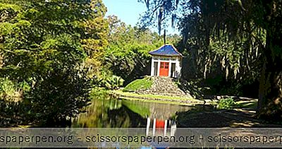 Dingen Om Te Doen In Louisiana: Jungle Gardens