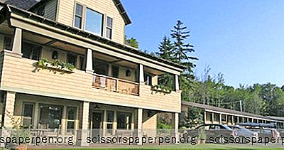 Birchwood Sustainable Lodging, Une Escapade De Week-End À Camden, Moi