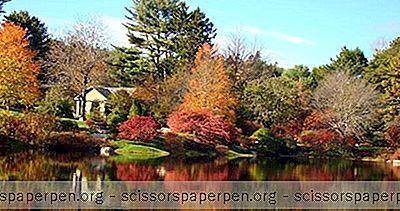 Dinge, Die Man In Maine Unternehmen Kann: Asticou Azalea Garden