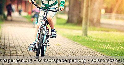 Pedalpower Kids - Fietsrijlessen Voor Kinderen In Annapolis