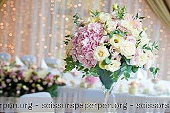 25 Die Besten Hochzeitsorte In Missouri