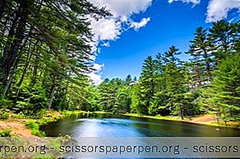 25 Best New Hampshire State & Nationalparks