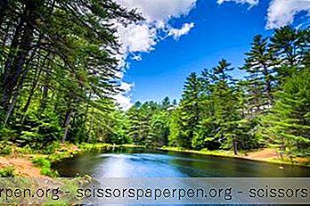 25 Najlepšie Nové Štátne A Národné Parky V Hampshire