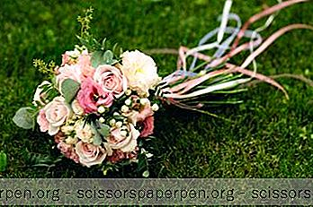 25 Най-Добрите Места За Сватба В Ню Хемпшир