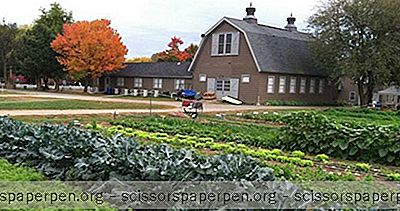 Long Island Zu Erledigen: Queens County Farm Museum