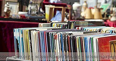 Plæneklipper Lørdag / Søndag Loppemarked I Woodstock, Ny