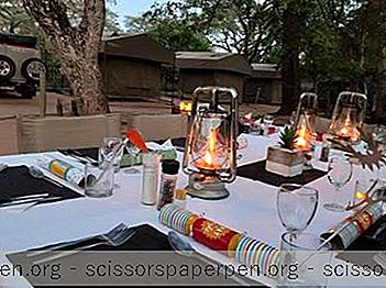 25 Best Kruger National Park Hotels