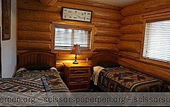 Beste Alaska Resorts: Salmon Catcher Lodge