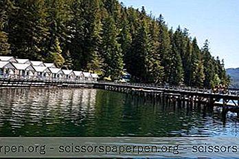 Τα Καλύτερα Θέρετρα Της Αλάσκας: Καταρράκτης