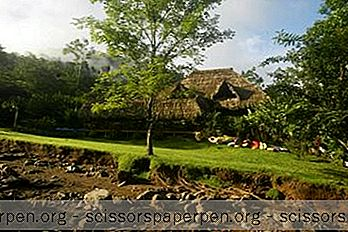Prázdniny - Rafiki Safari Lodge, Medové Týždne V Kostarike