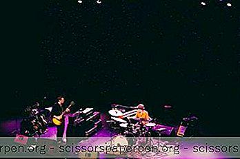 Jav - Charleston Muzikos Salė Charleston, Sc