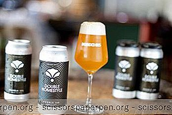 25 Best Tennessee Breweries