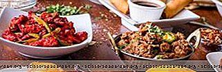 ह्यूस्टन में 22 सर्वश्रेष्ठ भारतीय भोजन