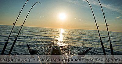 Pêche Sur L'Île De South Padre
