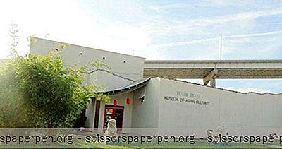 Tekemistä Corpus Christi, Tx: Aasian Kulttuurien Ja Koulutuskeskuksen Texasin Osavaltion Museo