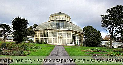 Pomysły - Irlandia Rzeczy Do Zrobienia: National Botanic Gardens Of Ireland