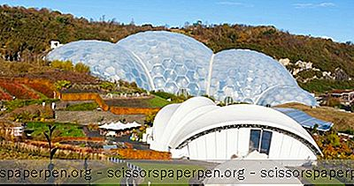 Choses À Faire En Angleterre: Eden Project