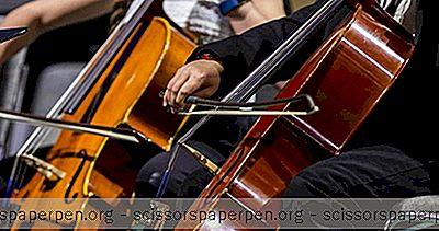 Čo Robiť V Norfolku: Virginia Symphony Orchestra