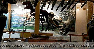 Vaiomingas Lietas, Kas Jādara: Vaiomingas Universitātes Ģeoloģijas Muzejs