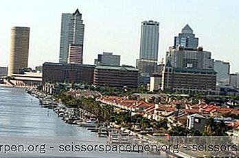 Bästa Tiden Att Besöka Tampa, Florida, Vädret Året Runt