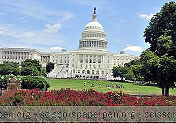 Najlepszy Czas Na Wizytę W Waszyngtonie Przez Cały Rok