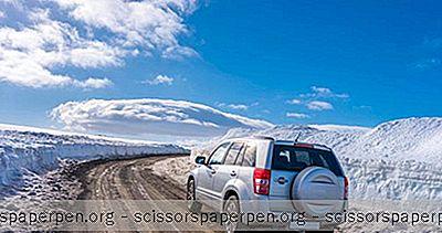 Conducerea În Islanda