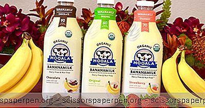 Mooala - Bio-Milchgetränke Ohne Milchprodukte Auf Pflanzlicher Basis