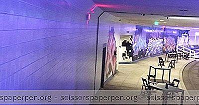 Μη Κερδοσκοπικό Επίκεντρο: Dupont Underground In Washington DC
