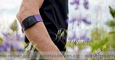 Scosche  - 尖端户外配件