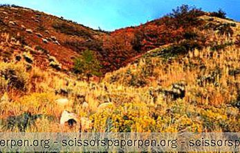 17 Los Mejores Parques De Salt Lake City