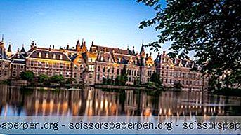 25 Paras Tekemistä Haagissa, Alankomaat