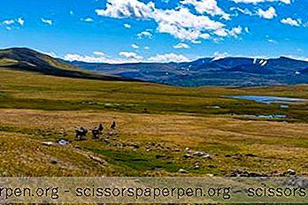 25 Najbolje Stvari U Mongoliji